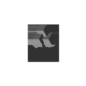 Aspis-2